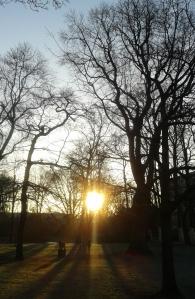 Morgensonne2